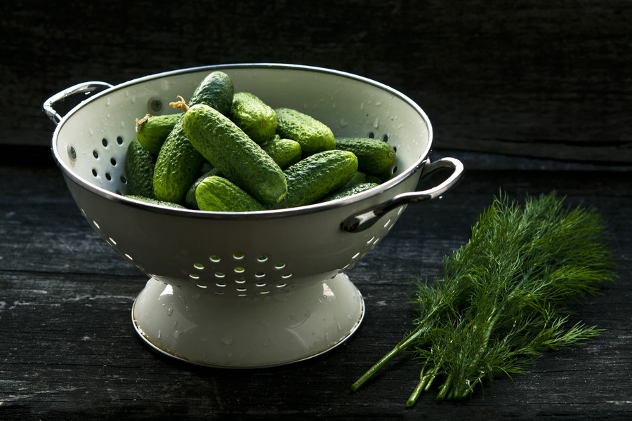 Cucumber and Dill