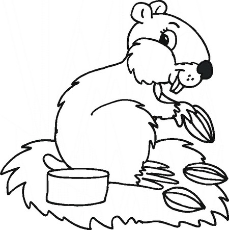 animal coloring pages hamster