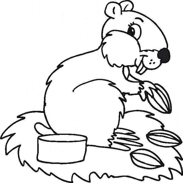 Animal Coloring Pages 171 Home Life Weekly Wildlife Colouring Pages