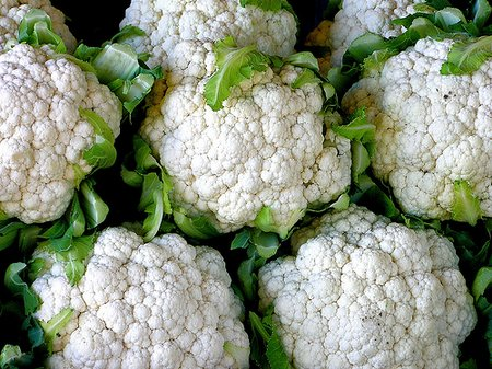 cauliflower photo by muffer