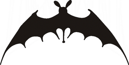 Pumpkin template bat